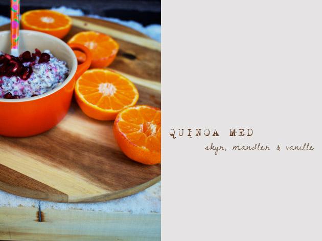 quinoa-tekst