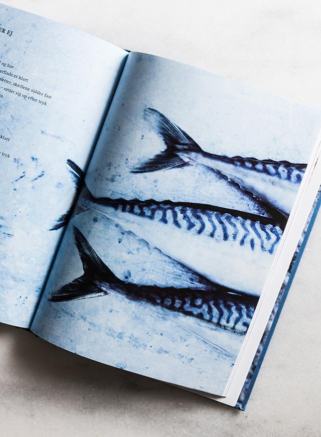 Fiskebogen